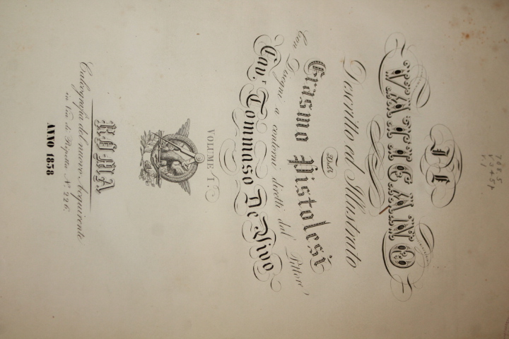 Talbot, Giovanni: Il Vaticano Descritto ed Illustrato a Sua Ecce