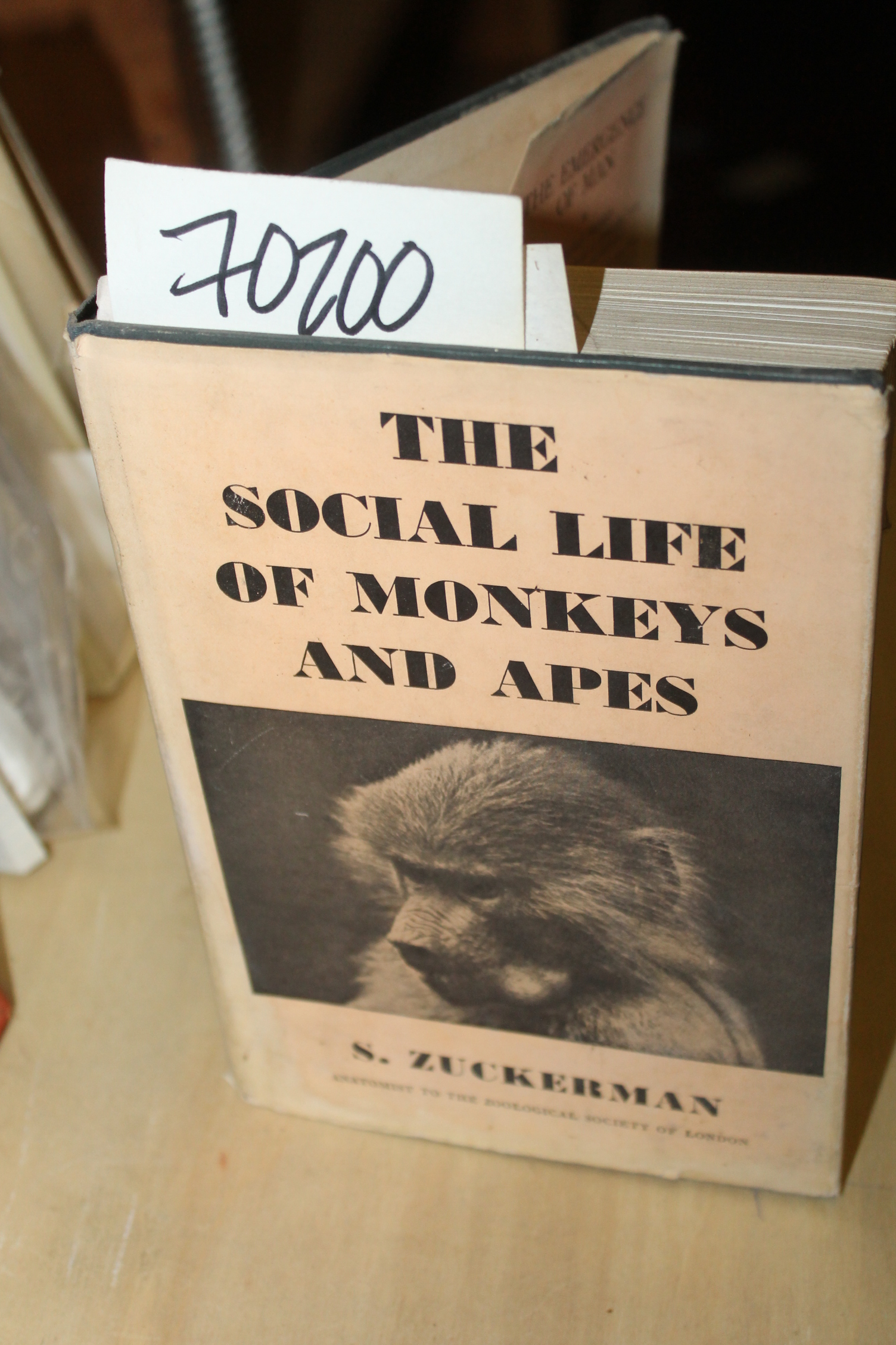 Zuckerman, S.: The Social Life of Monkeys and Apes