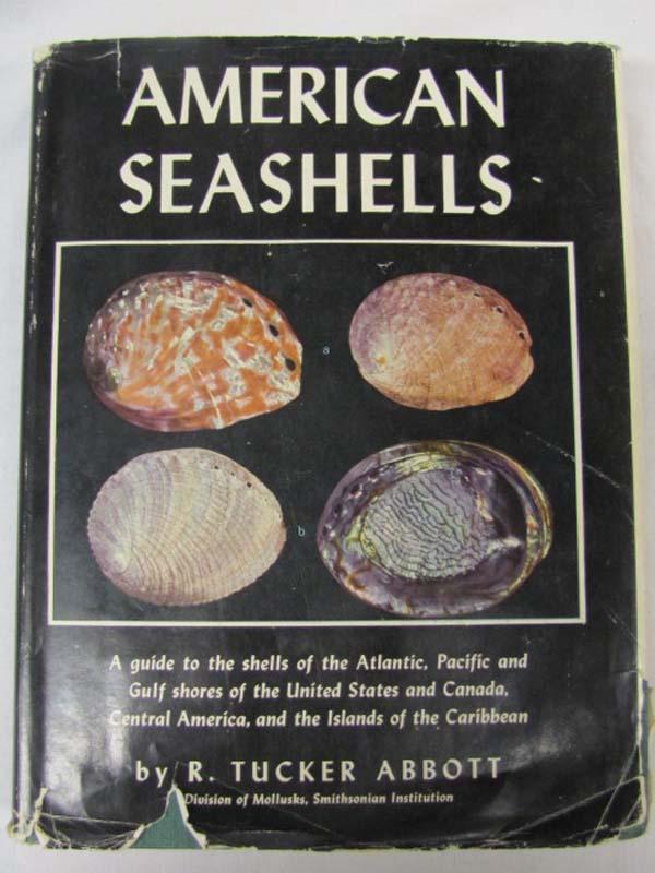 Abbott, R. Tucker: American Seashells